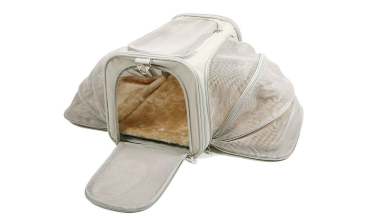 Jet Sitter Luxury Soft Sided Pet Carrier Review