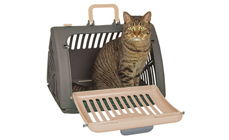 SportPet Designs Collapsible Travel Cat Carrier Review